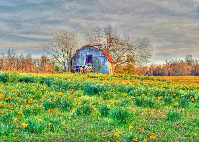 Barn Greeting Card featuring the photograph Barn In Field Of Flowers by Geary Barr
