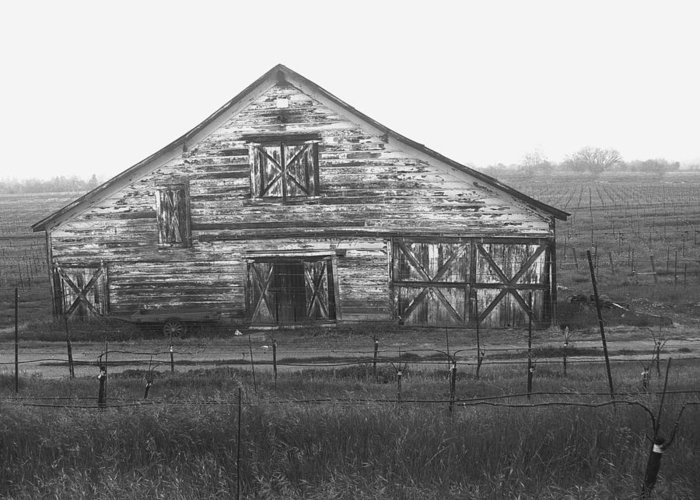 Barn Greeting Card featuring the photograph Barn Of X by Tom Reynen