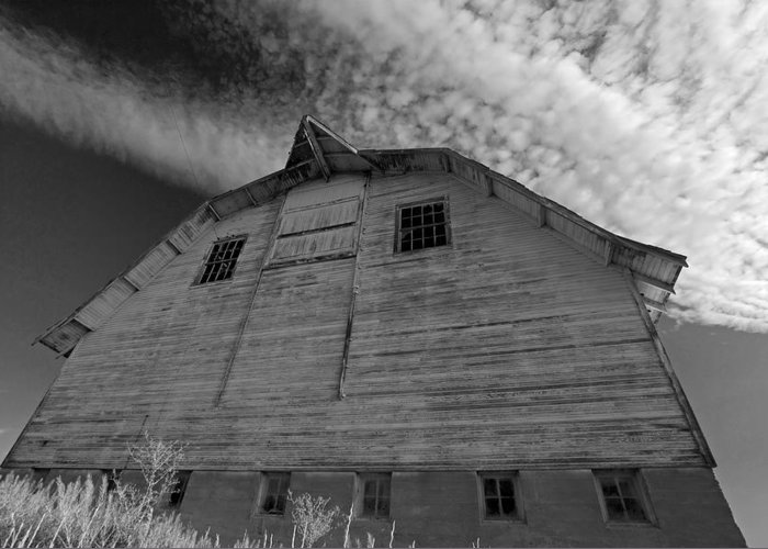 Barn Greeting Card featuring the photograph Barn Rising by Jennifer Riefenberg