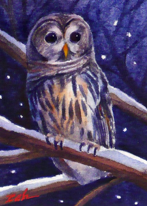 Bird Greeting Card featuring the painting Barred Owl And Starry Sky by Janet Zeh