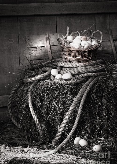 Background Greeting Card featuring the photograph Basket Of Eggs On A Bale Of Hay by Sandra Cunningham