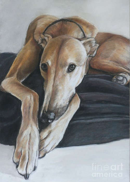 Dog Greeting Card featuring the painting Bauregard by Charlotte Yealey