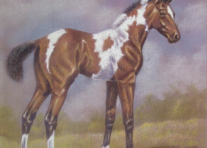 Foa; Paint Horse Greeting Card featuring the pastel Bay Paint Foal by Dorothy Coatsworth