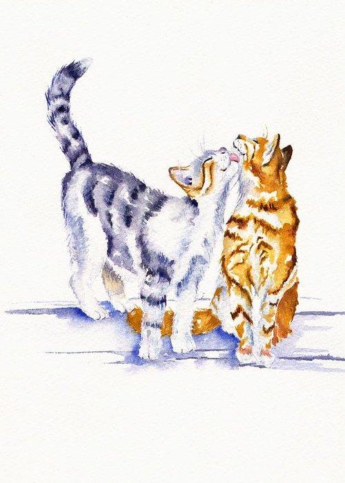 Tom Cat Greeting Cards