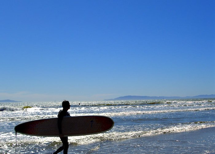 Beach Greeting Card featuring the photograph Beach Boy 2 by Robin Hernandez
