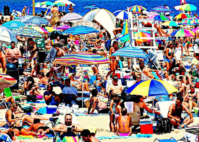 Beach Greeting Card featuring the photograph Beach Chaos by Diana Angstadt
