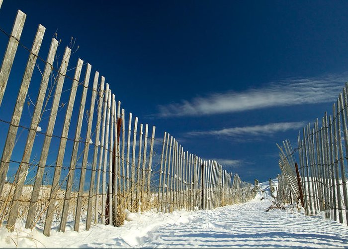 Beach Fence Greeting Card featuring the photograph Beach Fence And Snow by Matt Suess