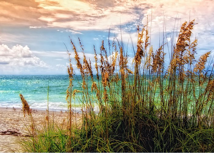 Beach Greeting Card featuring the photograph Beach Grass II by Gina Cormier