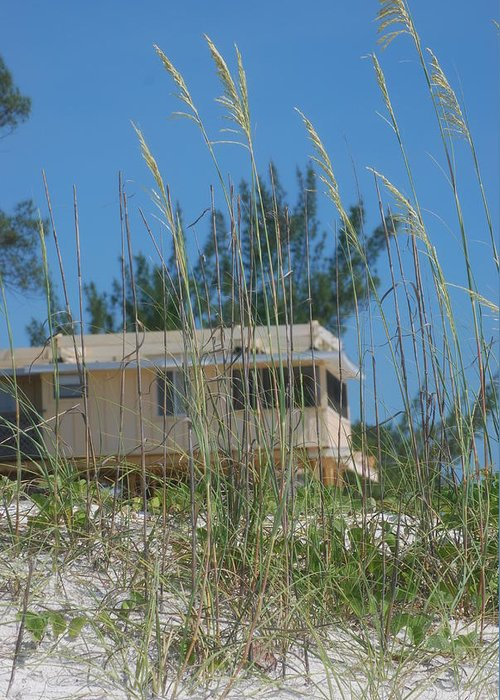 Landscape Greeting Card featuring the photograph Beach House Through Sea Oats by Lisa Gabrius