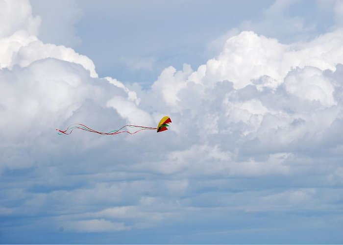Kite Greeting Card featuring the photograph Beach Kite by Peter McIntosh