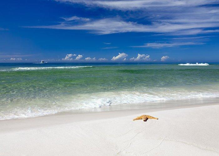 Postcard Greeting Card featuring the photograph Beach Splendour by Janet Fikar