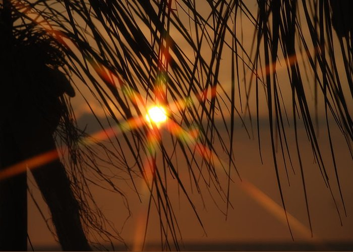Landscape Greeting Card featuring the photograph Beach sunset by Lisa Gabrius