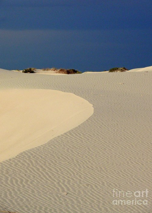 Sand Greeting Card featuring the photograph Beach With No Water by Mark Grayden