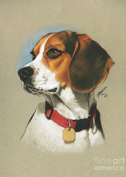 Pencil Paintings Greeting Cards