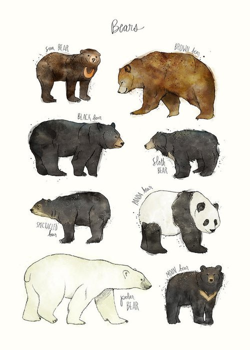 Bear Greeting Card featuring the drawing Bears by Amy Hamilton