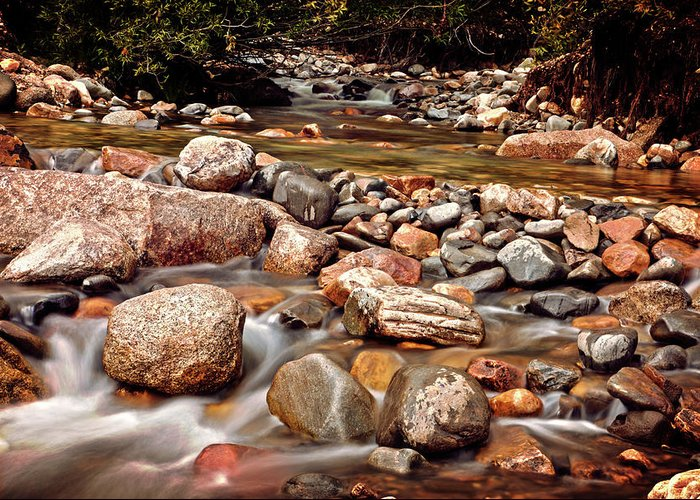 Creek Greeting Card featuring the photograph Beautiful Creek by Dan Pearce