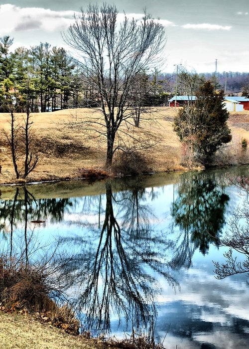 Pond Greeting Card featuring the photograph Beautiful Reflection 2 by Kathy Jennings