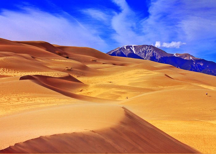 The Dunes Greeting Card featuring the photograph Beauty Of The Dunes by Scott Mahon