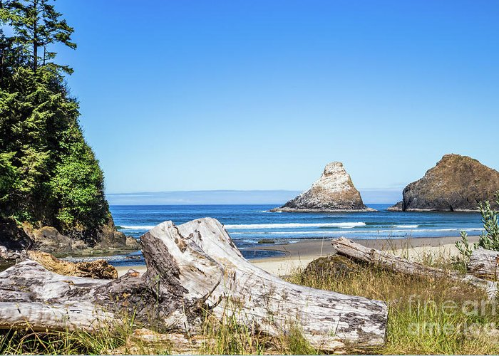 Oregon Greeting Card featuring the photograph Beauty On The Pacific Coast by Lisa Lemmons-Powers