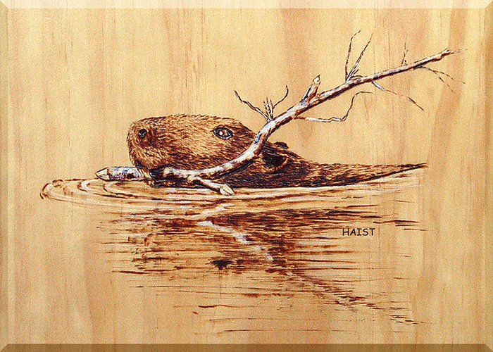 Beaver Greeting Card featuring the pyrography Beaver by Ron Haist