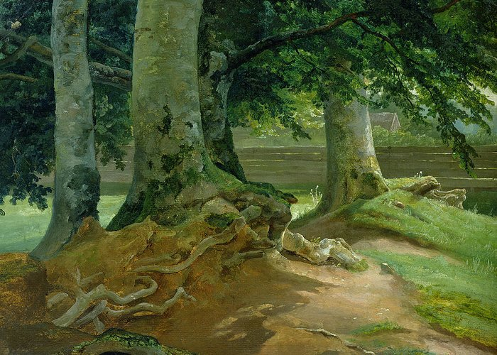 Beech Greeting Card featuring the painting Beech Trees In Frederiksdal Near Copenhagen by Christian Ernst Bernhard Morgenstern
