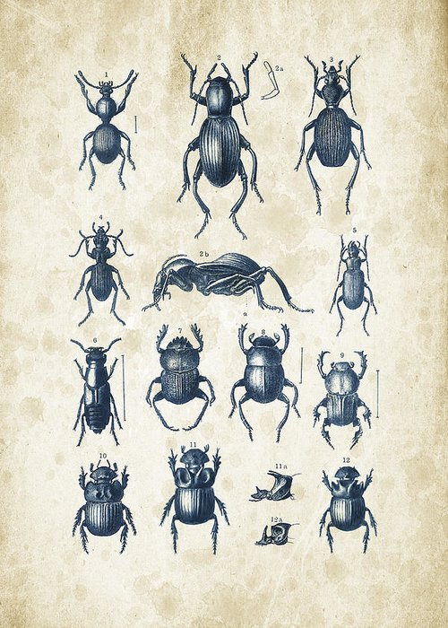 Insect Digital Art Greeting Cards