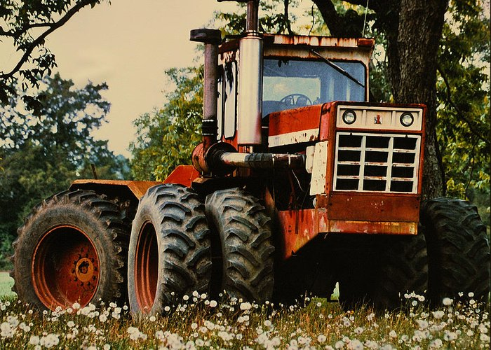 Farm Greeting Card featuring the photograph Before The Harvest by Lori Mellen-Pagliaro