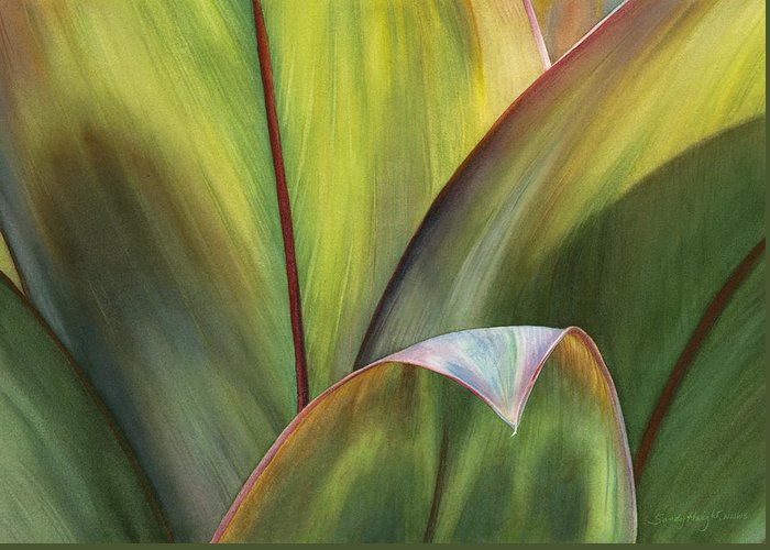 Cordyline Greeting Cards
