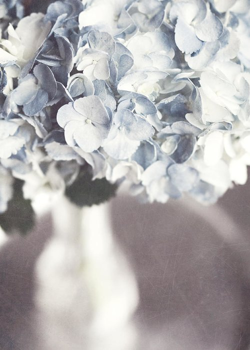 Hydrangea Greeting Card featuring the photograph Bella Donna by Lisa Russo