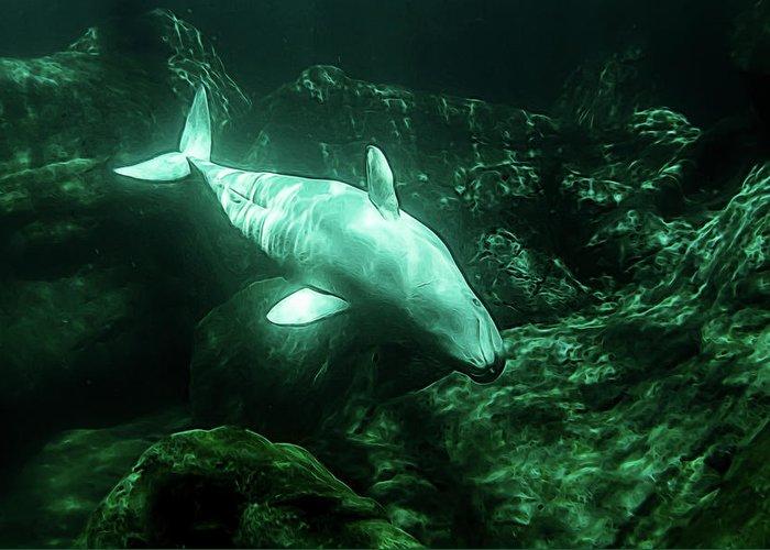 Aquarium Greeting Card featuring the photograph Beluga Whale 5 by Janet Fikar