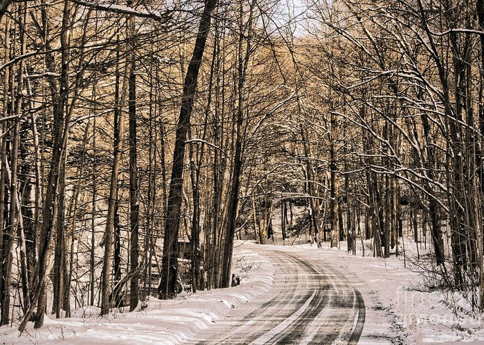 Winter Greeting Card featuring the photograph Bend In The Road by Onedayoneimage Photography