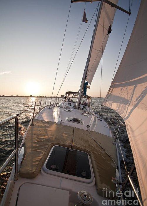 Sailing Greeting Card featuring the photograph Beneteau 49 Sailing Yacht Close Hauled Charleston Sunset Sailboat by Dustin K Ryan