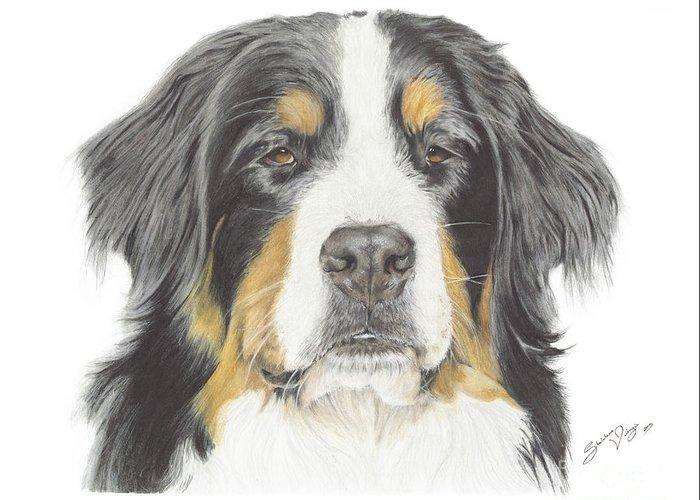 Bernese Mountain Dog Drawing Greeting Card