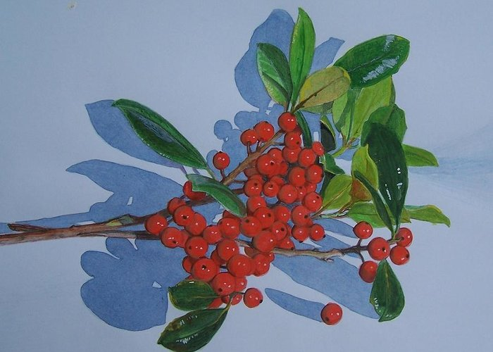 Berries Greeting Card featuring the mixed media Berries by Constance Drescher