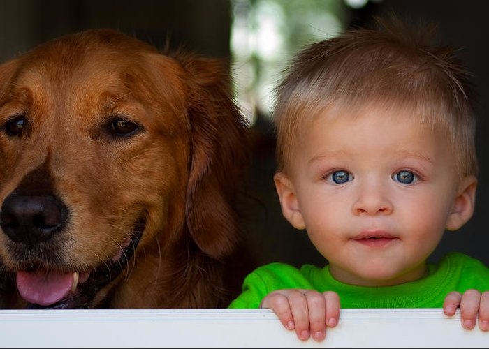 Child Greeting Card featuring the photograph Best Friends by Matt Dobson