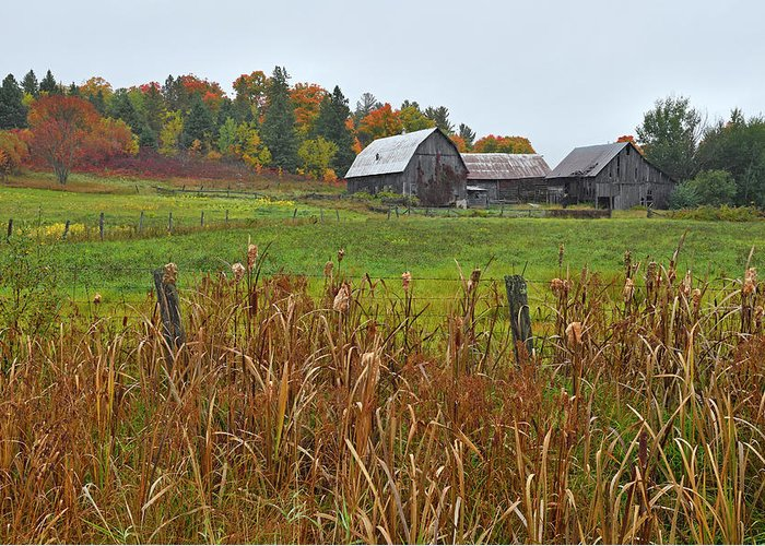 Gatineau Park Greeting Card featuring the photograph Beyond The Hill by Tony Beck