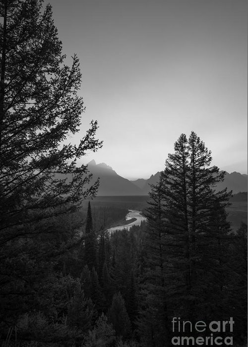 Beyond The Trees Greeting Card featuring the photograph Beyond The Trees Bw by Michael Ver Sprill