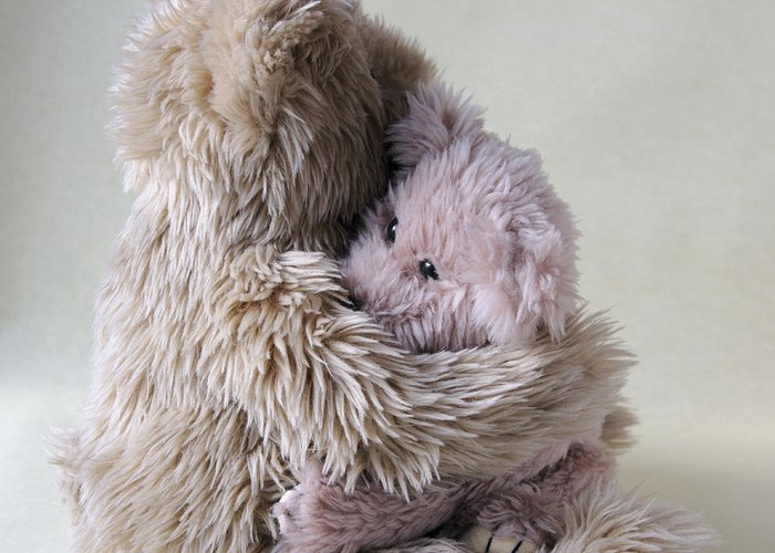 Teddy Bear Greeting Card featuring the photograph Big Bear Holds Little Bear by Ruby Hummersmith