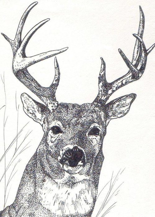 Whitetail Deer Greeting Card featuring the painting Big Buck by Debra Sandstrom