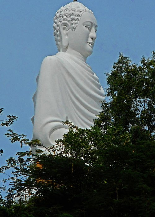 Phu My Greeting Card featuring the photograph Big Buddha 5 by Ron Kandt