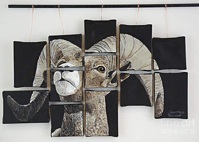 Wildlife Greeting Card featuring the painting Big Horn Fragments by Taunya Bruns