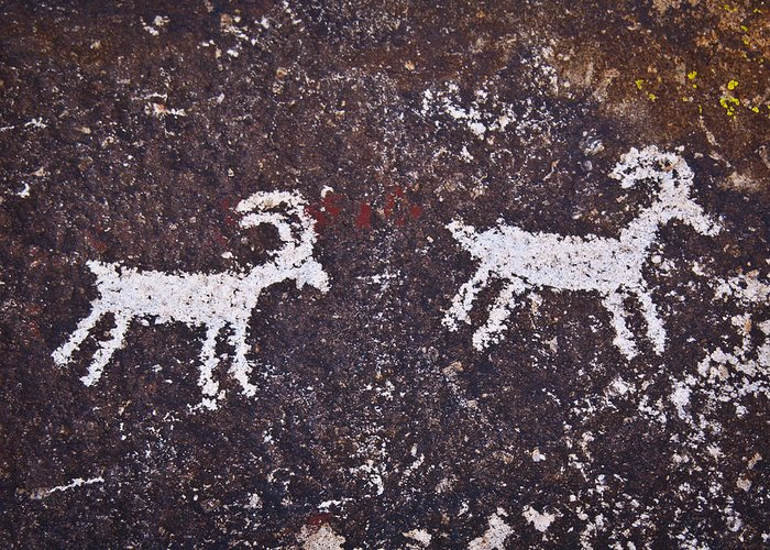 Petroglyphs Greeting Card featuring the photograph Big Horn Sheep by Joan McDaniel