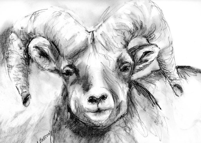 Big Horn Greeting Card featuring the drawing Big Horn Sheep by Marilyn Barton