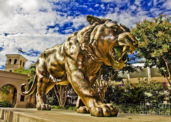 Mike The Tiger Greeting Card featuring the photograph Big Mike by Scott Pellegrin
