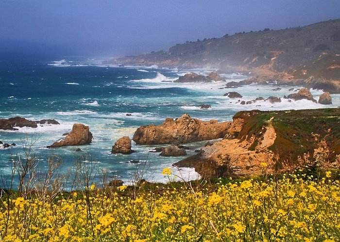 Big Sur Greeting Card featuring the photograph Big Sur Spring Beauty by Donna Kennedy