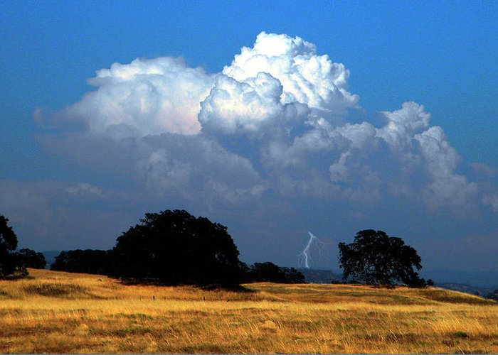 Photography Greeting Card featuring the photograph Billowing Thunderhead by Frank Wilson