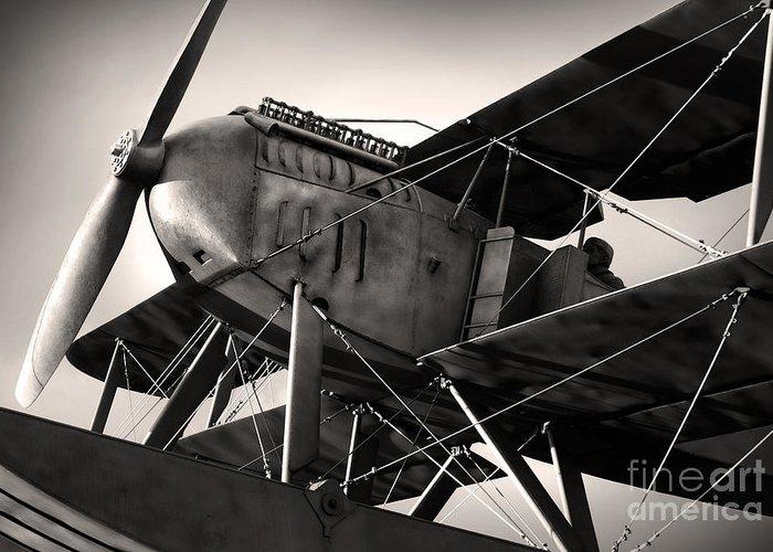 Air Greeting Card featuring the photograph Biplane by Carlos Caetano