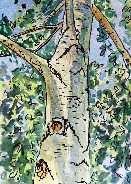 Birch Greeting Card featuring the painting Birch Tree Sketchbook Project Down My Street by Irina Sztukowski