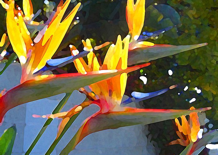 Abstract Greeting Card featuring the painting Bird Of Paradise Backlit By Sun by Amy Vangsgard