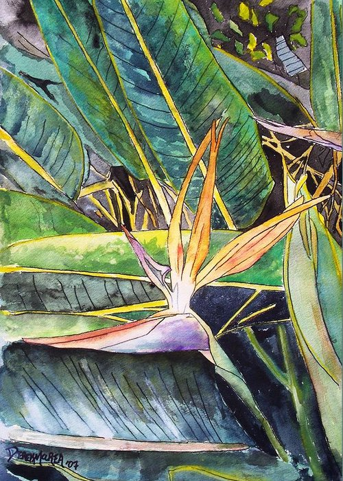 Watercolor Greeting Card featuring the painting Bird Of Paradise by Derek Mccrea